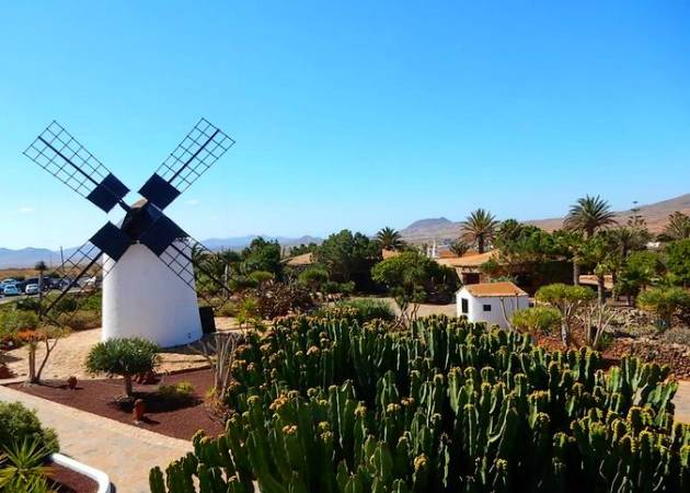 Antigua, un gran destino turístico en Fuerteventura