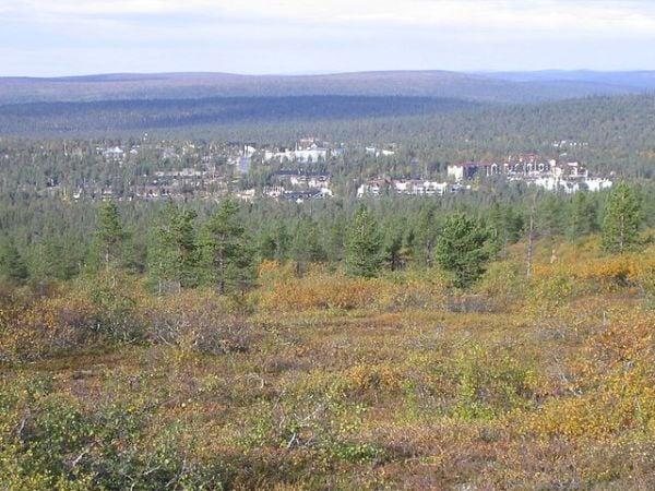 Disfruta de la aurora boreal en Saariselkä, Finlandia