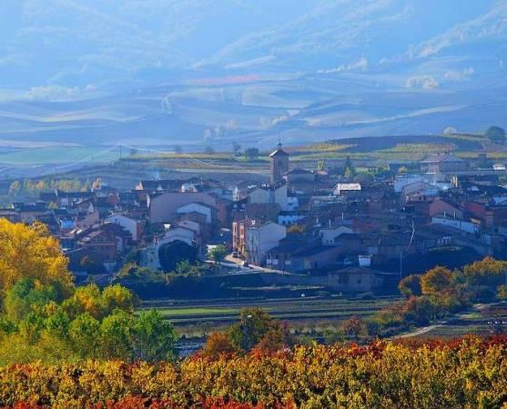 Escapada enológica a Badarán, en La Rioja