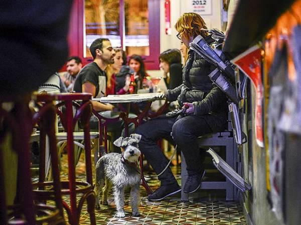 Bares a los que puedes entrar con tu perro en Barcelona