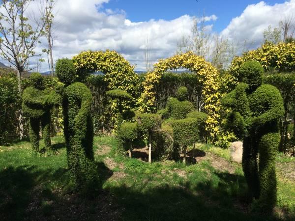 Bosque Encantado, esculturas vegetales únicas