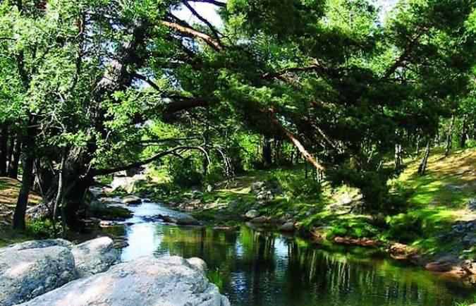 El Bosque Finlandés de Rascafría