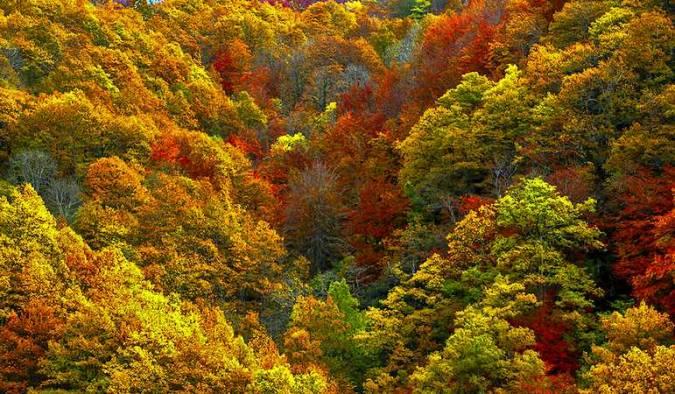 Destinos para el otoño: valle de Sajambre, en León