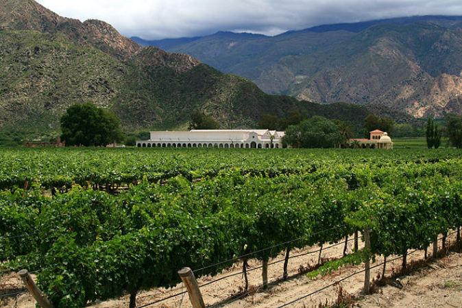 Cafayate, un destino argentino para los amantes del vino