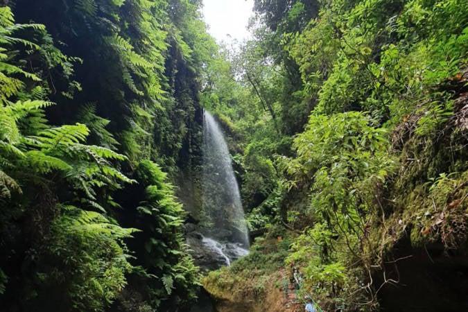 Las cascadas más espectaculares de La Palma