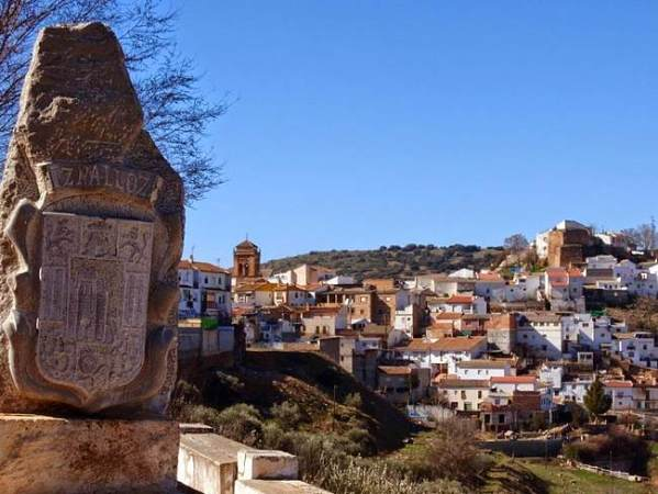 Setas de otoño en Iznalloz, Granada