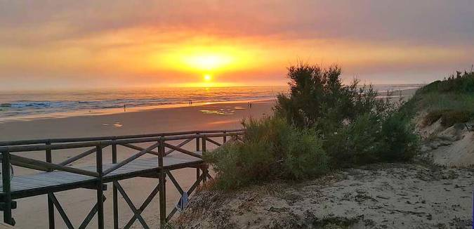 Playa de Costa Ballena, en Cádiz