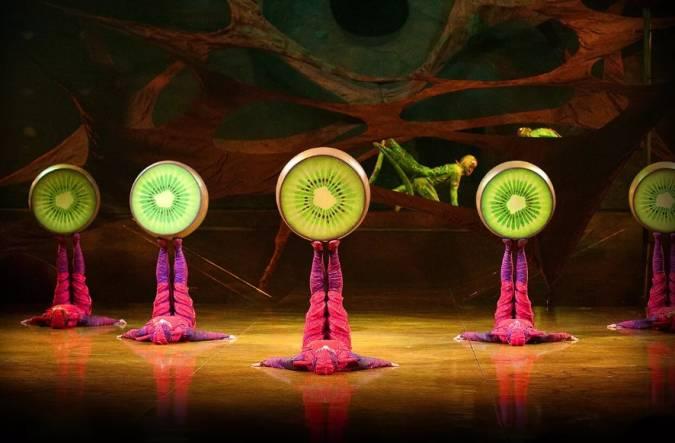 Cuatro circos en Madrid para una tarde diferente