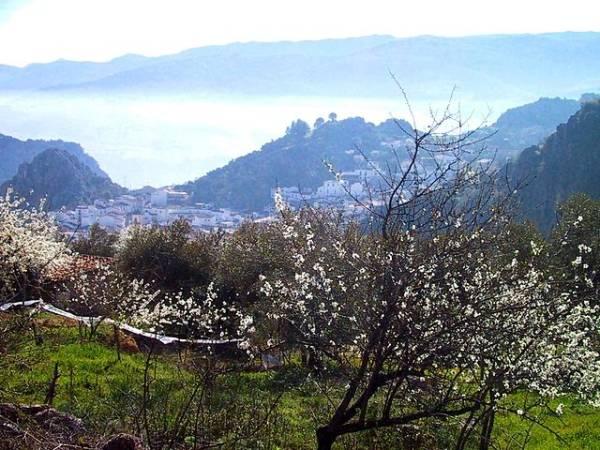 El pueblo blanco de Montejaque, en Málaga