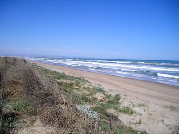 El Saler, playas y naturaleza junto a Valencia