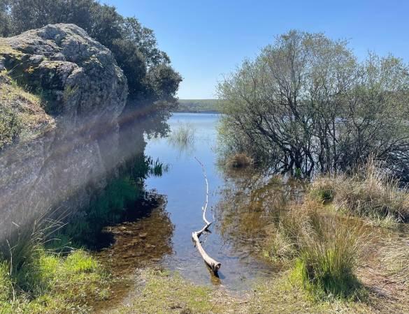 agua y paisaje