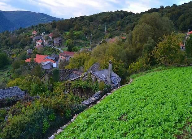 Concejo de Pantón, en Lugo