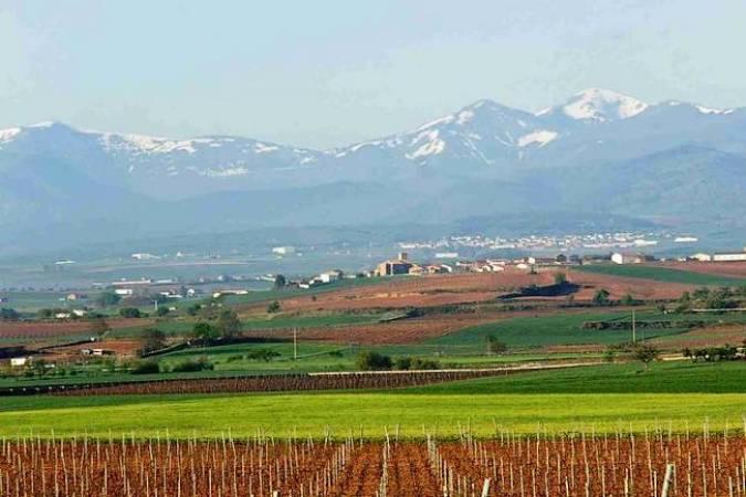 Escapada enoturística a Azofra, en La Rioja