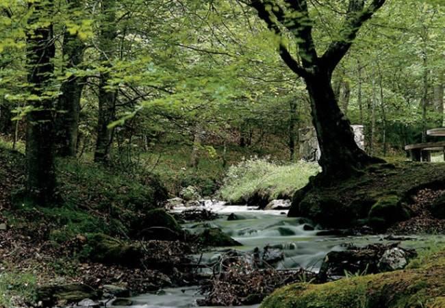 España, el país con más Reservas de la Biosfera del mundo