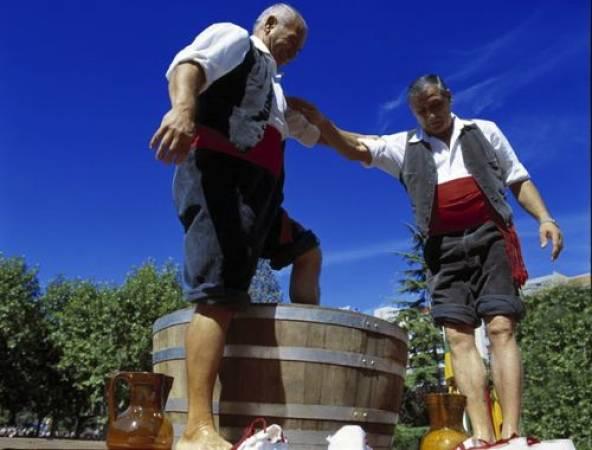 La Fiesta De La Vendimia En Logroño En Septiembre