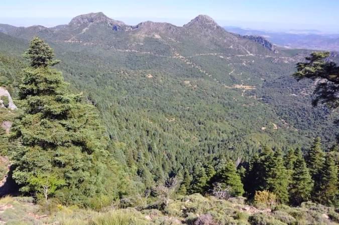 Parque Natural de la Sierra de Grazalema, en Cádiz