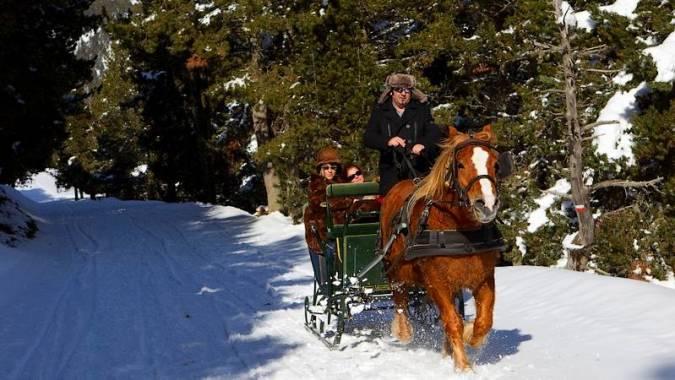 Paseo en trineo tirado por caballos en Baqueira