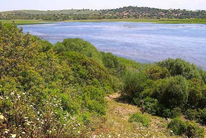 Laguna de Jeli, en Chiclana, Cádiz