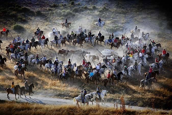 Encierros de Cuéllar, en Segovia