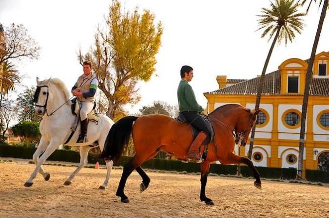 Escuela Andaluza del Arte Ecuestre, en Jerez de la Frontera