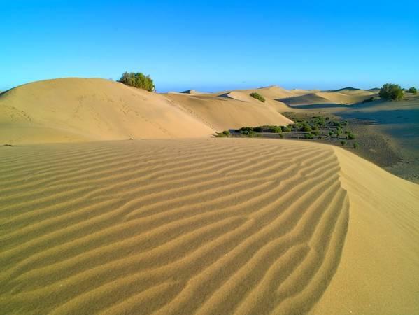 Reserva Natural Especial de las Dunas de Maspalomas