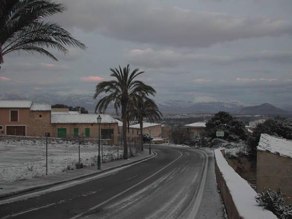 Hoteles baratos en Costitx: una Navidad especial en Mallorca