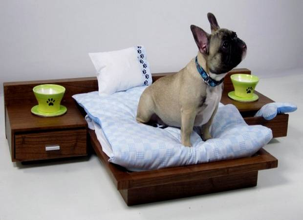 Hoteles que aceptan mascotas en Salou
