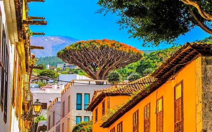 Icod de los Vinos, parada obligada en Tenerife
