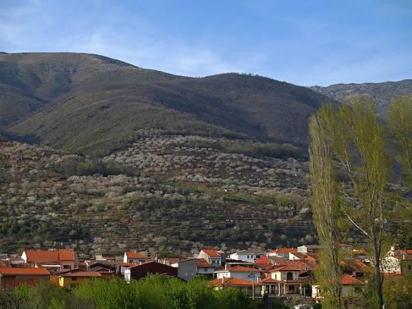 Escapada al pueblo de Jerte, en Cáceres
