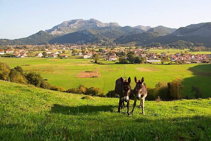 Vista panorámica de Liendo, en Cantabria