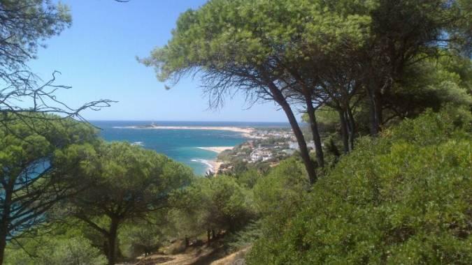 Los Caños de Meca, en la provincia andaluza de Cádiz