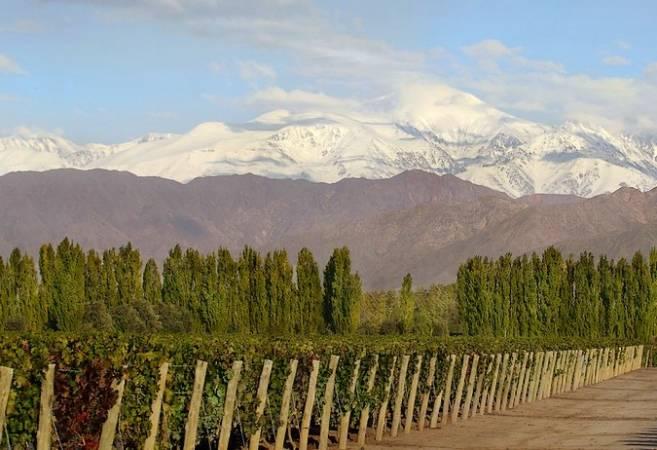 Luján de Cuyo, enoturismo y naturaleza en Argentina