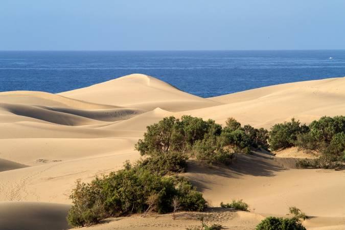 Maspalomas, Gran Canaria: el paraíso para estrenar antes que nadie las tendencias 2019