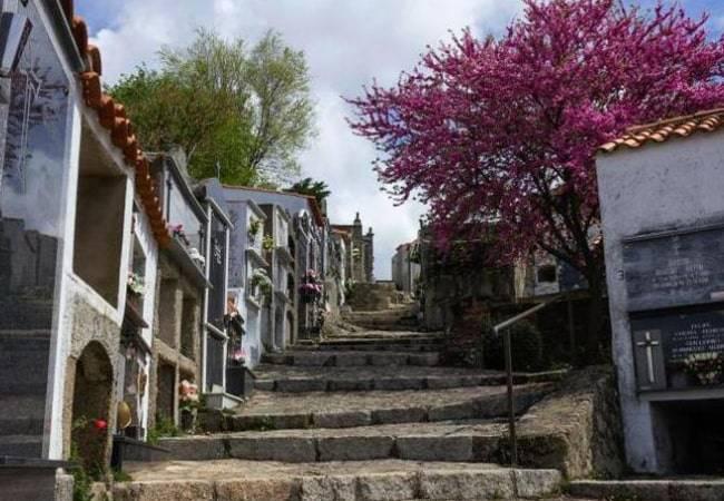 Necroturismo: los cementerios más bonitos de España