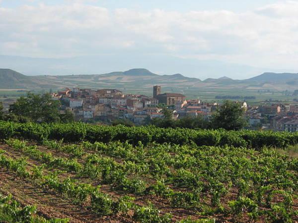 Nos vamos de vinos a la localidad de Entrena, en La Rioja