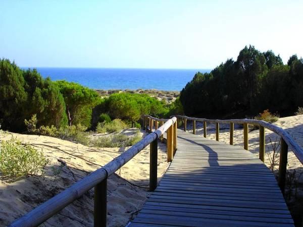 El Paraje Natural de los Enebrales, en Punta Umbría