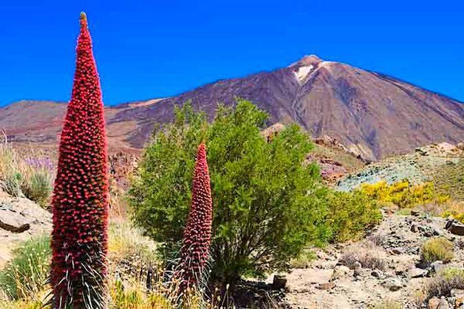 El Parque Nacional del Teide, en la isla de Tenerife