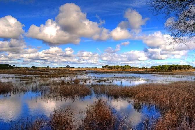 Parque Nacional de Doñana, en Andalucía