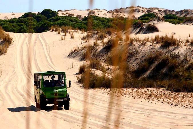 Visita a Doñana en vehículo 4x4