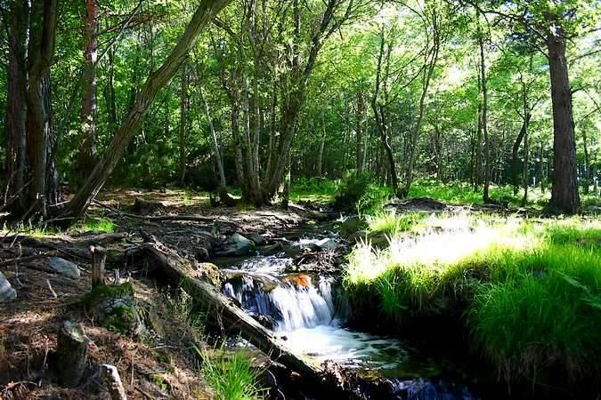El Parque Natural del Moncayo, en Zaragoza