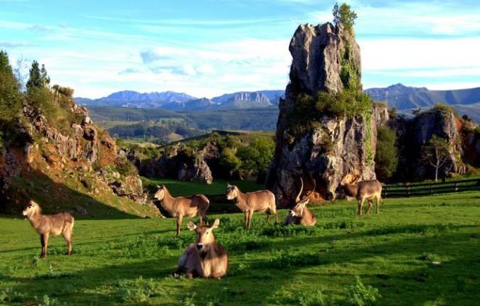 El Parque de la Naturaleza de Cabárceno, en Cantabria
