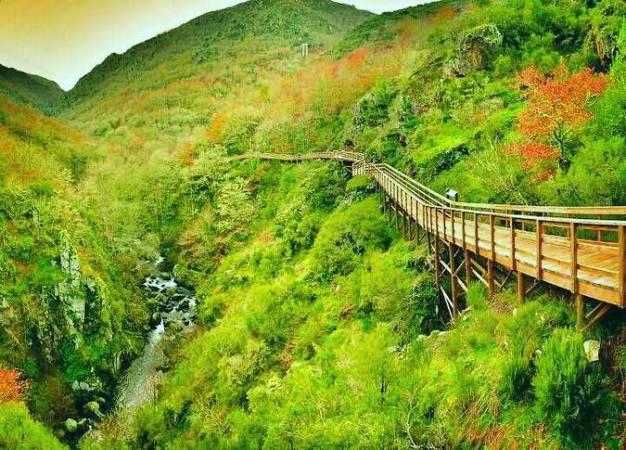 Las pasarelas del río Mao, en Ourense