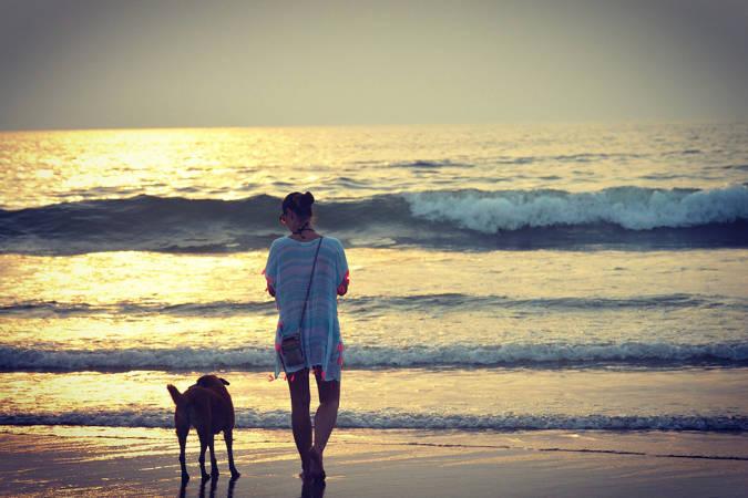 El placer de viajar con tu perro