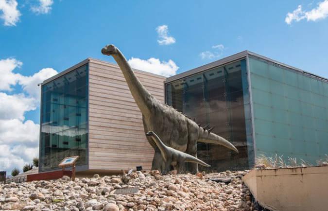 Museo de Paleontología Castilla-La Mancha