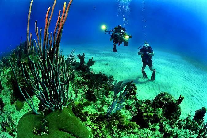 Submarinismo en la playa de la Arena, en Tenerife