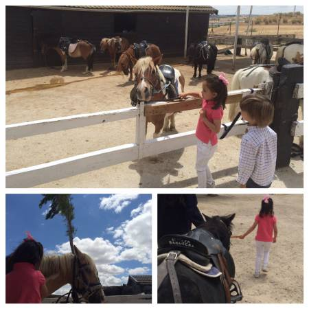 Ponyclub La Moraleja
