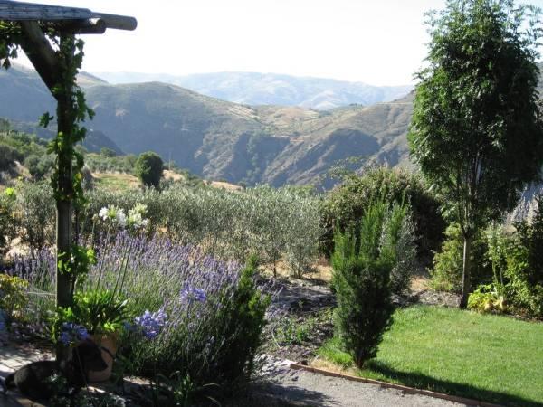 Entorno natural de Pórtugos, en Granada