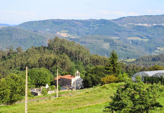 Prados verdes en Asturias