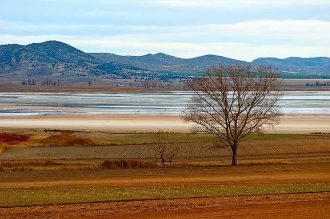 La Reserva Natural de la Laguna de Gallocanta, en Zaragoza