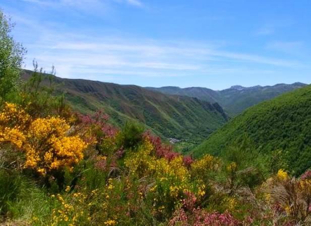 Sierra de los Ancares, en León